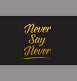 never say never gold word text typography vector image vector image