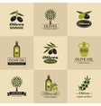 Olive logos labels and emblems vector image vector image