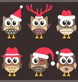 set cute brown owls with christmas hats vector image