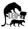 set leopard silhouettes vector image vector image