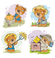 set of of of teddy bear vector image