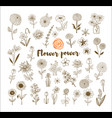 set of vintage doodle sketch flowers on white vector image vector image