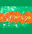 spring lettering design logo decorative vector image vector image