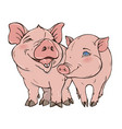 two cute funny pig vector image vector image