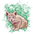 Young lynx on a green background vector image
