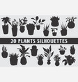 20 plants silhouettes various design set vector image