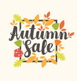 autumn sale design with colorful autumn leaves vector image