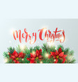 banner with poinsettia flowers and fir branches vector image