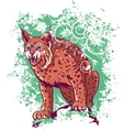 Bobcat on a green background vector image