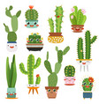 cute cactus pots happy face cartoon succulent vector image vector image