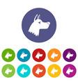 doberman dog set icons vector image