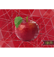 Polygonal red apple with background vector image vector image