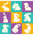 rabbit collection vector image