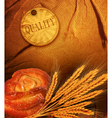 background with ears of wheat and white bre vector image