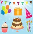 Birthday Party Element vector image