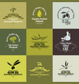 olive oil labels set vector image vector image