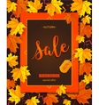 Autumn sale vintage typography poster with vector image