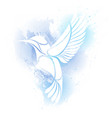 colibri bird logo vector image