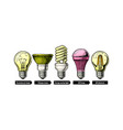 evolution set light bulb vector image