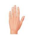 hand isolated vector image