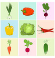 icons fresh vegetables vector image