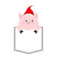 pig in pocket cute cartoon character santa vector image vector image