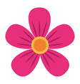 pink flower decoration ornament natural vector image