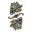 two skulls in vintage style vector image vector image