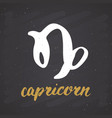 zodiac sign capricorn and lettering hand drawn vector image vector image