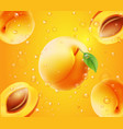 apricot in juice orange background vector image vector image