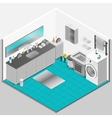 Bathroom Interior Design vector image vector image