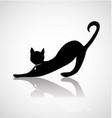 black cat silhouette icon vector image