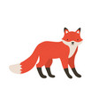 funny furry little fox adorable lovely fluffy vector image