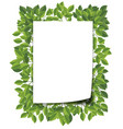 green leaf blank border vector image