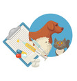 pet vet veterinary doctor animal clinic dog cat vector image vector image