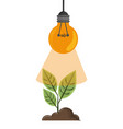 raised plant with light bulb vector image vector image