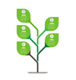 tree of development and growth of the eco vector image