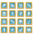 tropical sea shell icons set sapphirine square vector image vector image
