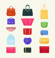 woman bag girls handbag or purse and vector image
