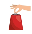bag gift buy credit card isolated vector image