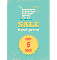 Best price shopping cart vector image vector image