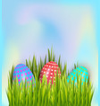colorful painted easter eggs hidden in green vector image