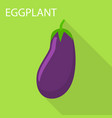 eggplant icon flat style vector image vector image