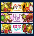 Fruit shop sketch banners of exotic fruits