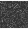 Seamless pattern with shells on dark background vector image vector image