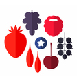Berry Set vector image vector image