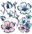 collection hand drawn flowers for design vector image
