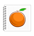 Hand drawn orange on spiral notepad paper vector image vector image