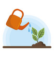 irrigated raised plant vector image vector image