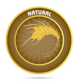 natural grain vector image vector image